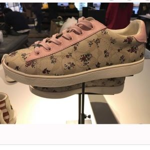 Coach Floral Low Too Sneakers
